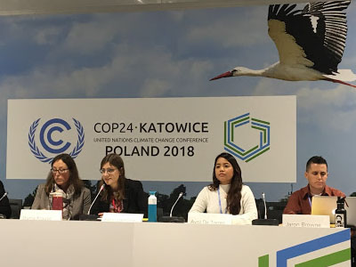 Die Klimakonferenz in Kattowitz. Wo stehen wir mit den Klimaverhandlungen?